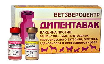 Вакцина Дипентавак Ветзвероцентр